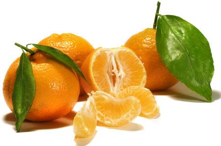 neretvanska mandarina