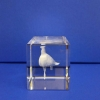 plava kutija za vučedolsku golubicu/ blue cardboard box for Vucedol Dove