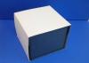 plava kutija za vučedolsku golubicu /The Vucedol Dove-box
