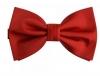 crvena leptir mašna/ Red Bow Tie