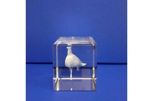 vučedolska golubica,3D animacija u staklu /The Vucedol Dove, 3D animation in glass cube