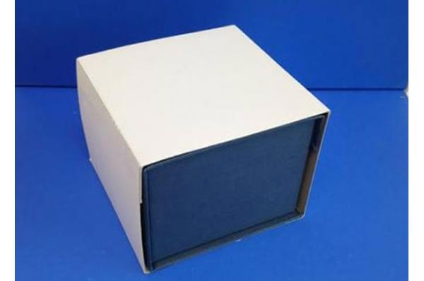 kutija za vučedolsku golubicu /The Vucedol Dove-box